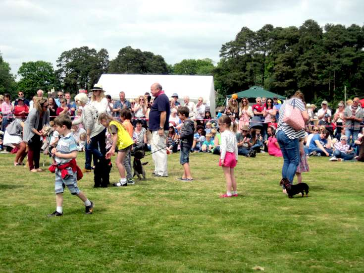 Staplefield Village Fete 2015 (4 of 5)