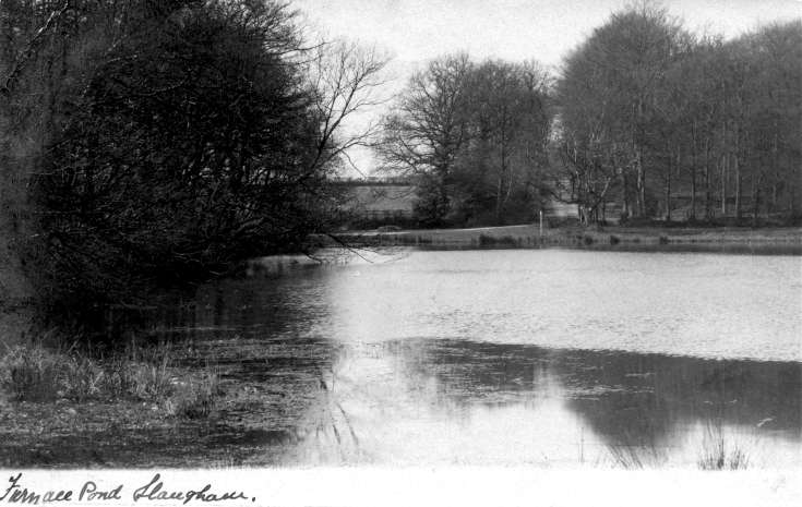 Slaugham Furnace Pond (1 of 11)