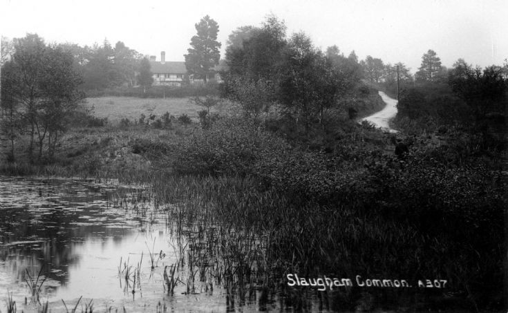 Slaugham Furnace Pond (3 of 11)