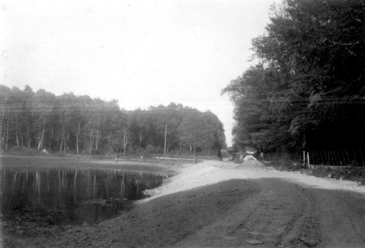 Slaugham Furnace Pond (9 of 11)