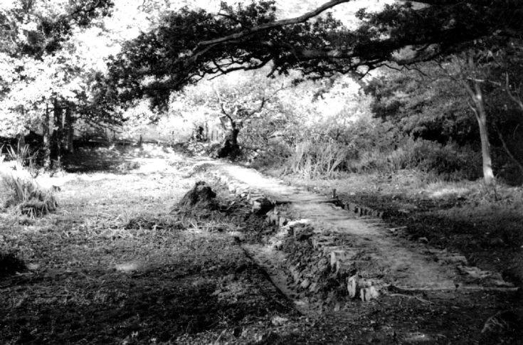Slaugham Furnace Pond (10 of 11)