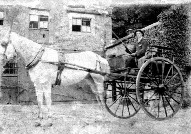 Horse and carriage at Denconbe house, Handcross