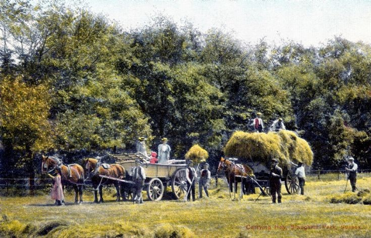 Farming at Slaugham Park