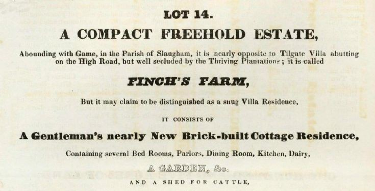 Auction 1836 (7 of 8) - Finches Farm