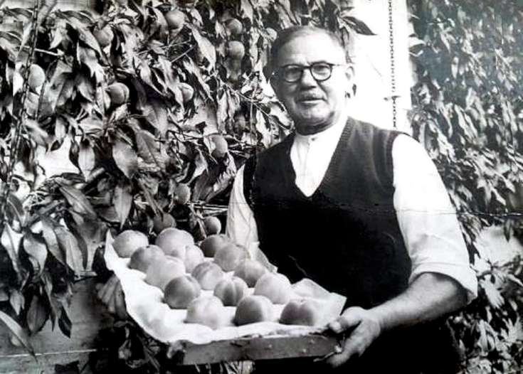 George Cook with peaches from Tilgate mension
