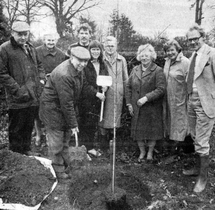 Tree planting in Handcross recreation ground