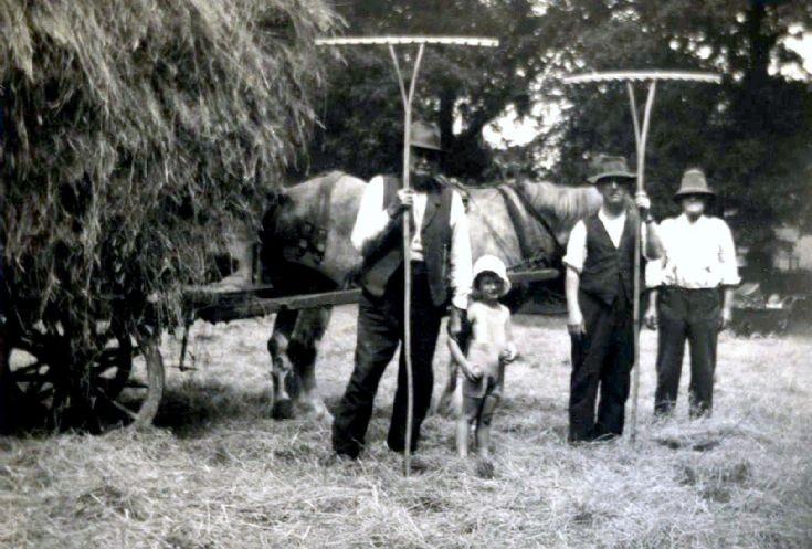 Haymaking in the cricket field, Handcross