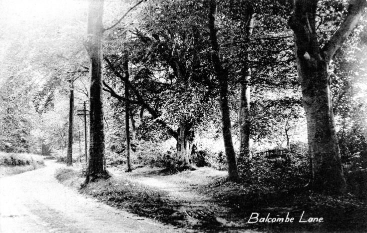 Balcombe Lane and telegraph poles