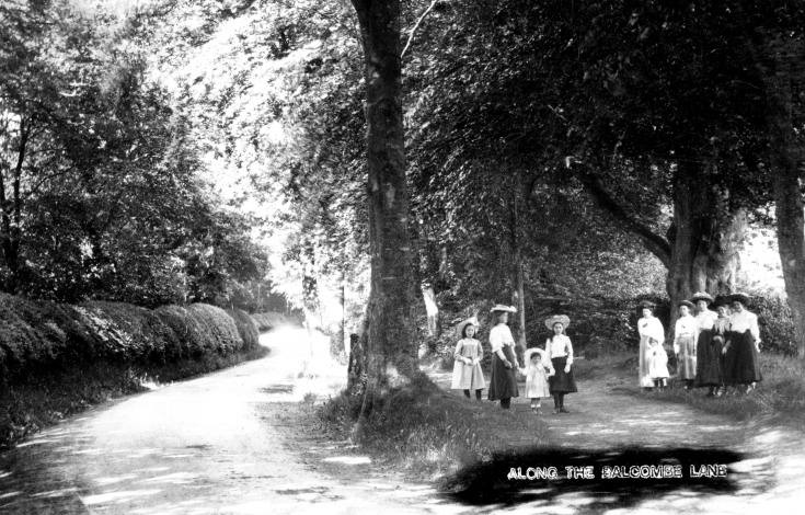 Group of ladies and girls in Balcombe Lane